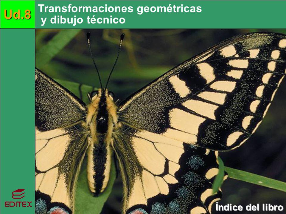 Transformaciones geométricas y dibujo técnicoUd.8 Índice del libro Índice del libro Siguiente 1.