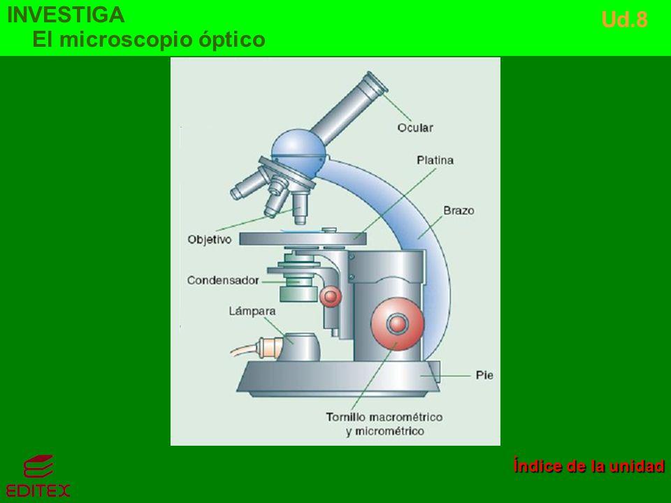INVESTIGA El microscopio óptico Ud.8 Índice de la unidad Índice de la unidad