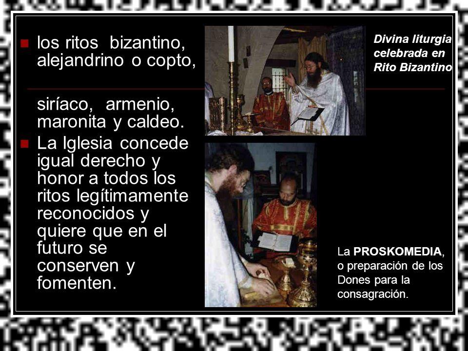 los ritos bizantino, alejandrino o copto, siríaco, armenio, maronita y caldeo. La Iglesia concede igual derecho y honor a todos los ritos legítimament