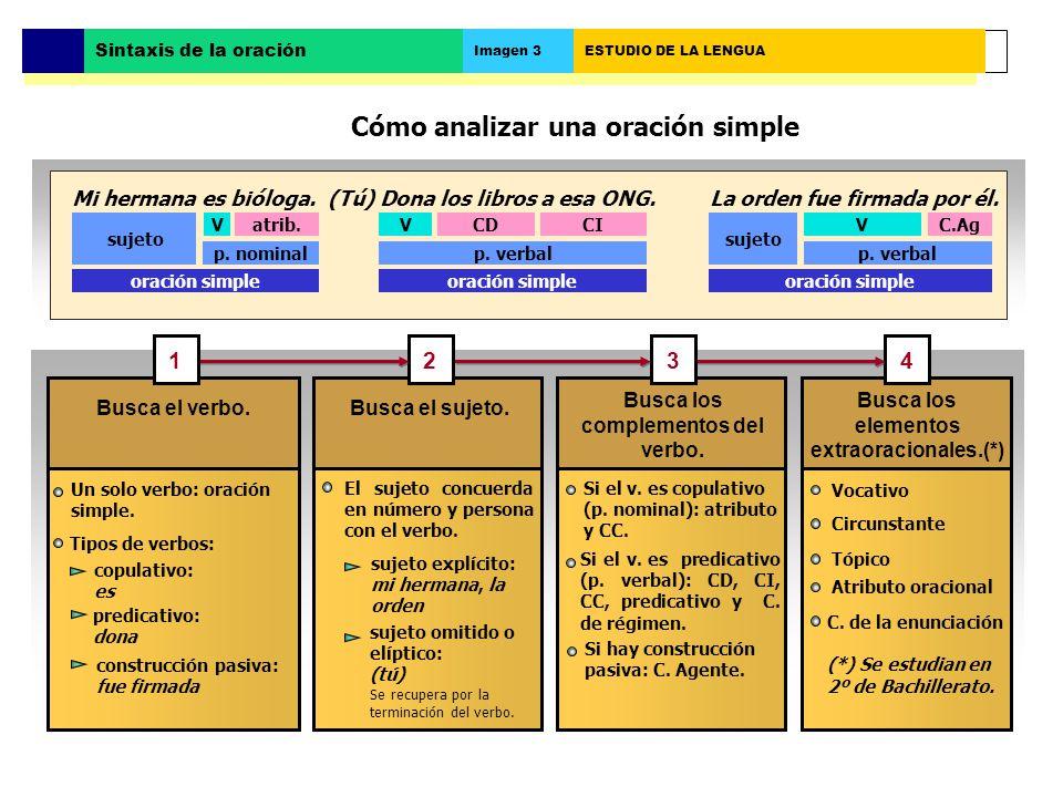 Cómo analizar una oración simple Busca el verbo.Busca el sujeto.