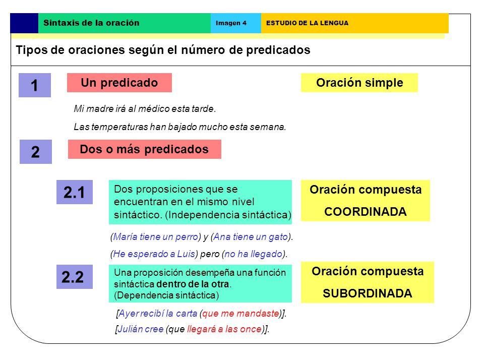 Cómo analizar una oración simple Busca el verbo.Busca el sujeto. Busca los complementos del verbo. Busca los elementos extraoracionales.(*) Mi hermana