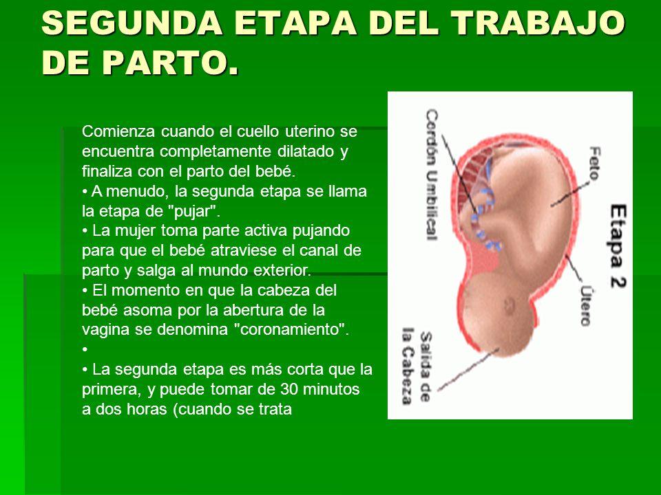 SEGUNDA ETAPA DEL TRABAJO DE PARTO. Comienza cuando el cuello uterino se encuentra completamente dilatado y finaliza con el parto del bebé. A menudo,