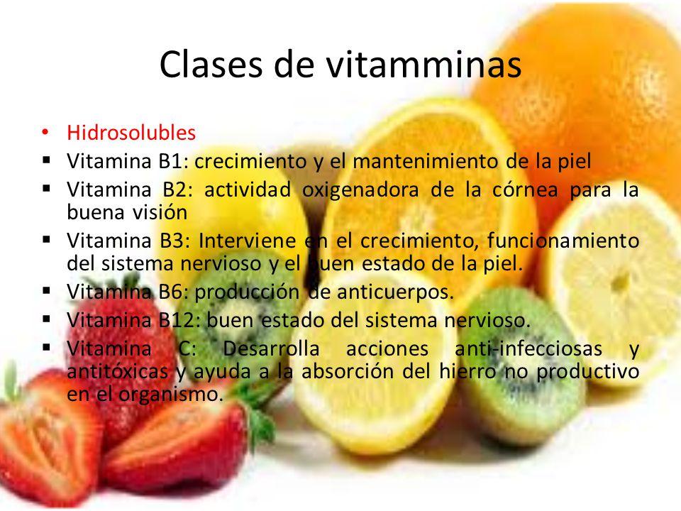 Clases de vitamminas Hidrosolubles Vitamina B1: crecimiento y el mantenimiento de la piel Vitamina B2: actividad oxigenadora de la córnea para la buen