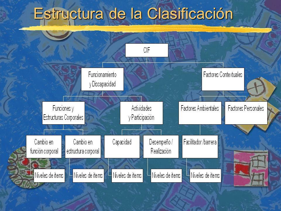 Estructura de la Clasificación