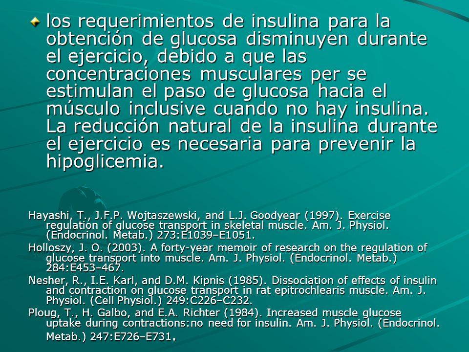 los requerimientos de insulina para la obtención de glucosa disminuyen durante el ejercicio, debido a que las concentraciones musculares per se estimu