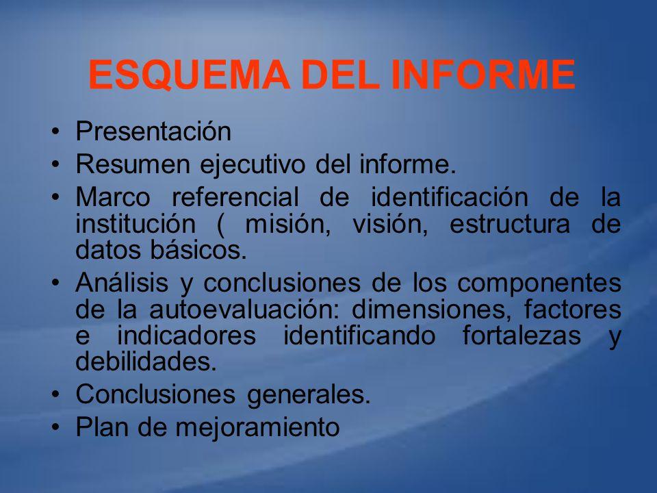 ESQUEMA DEL INFORME Presentación Resumen ejecutivo del informe. Marco referencial de identificación de la institución ( misión, visión, estructura de