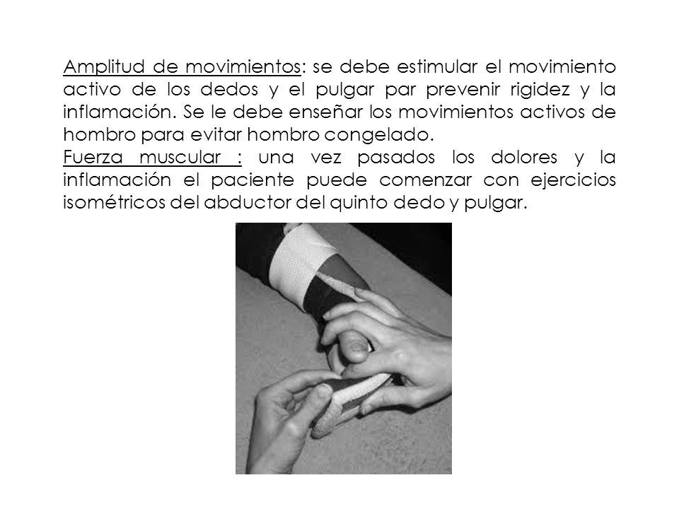 Amplitud de movimientos: se debe estimular el movimiento activo de los dedos y el pulgar par prevenir rigidez y la inflamación. Se le debe enseñar los