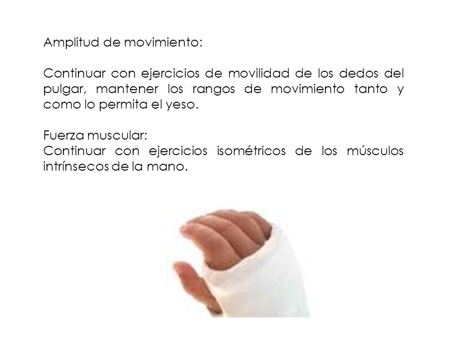 Amplitud de movimiento: Continuar con ejercicios de movilidad de los dedos del pulgar, mantener los rangos de movimiento tanto y como lo permita el ye