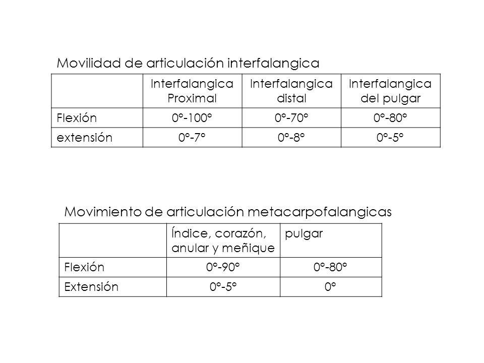 Interfalangica Proximal Interfalangica distal Interfalangica del pulgar Flexión0°-100°0°-70°0°-80° extensión0°-7°0°-8°0°-5° Movilidad de articulación