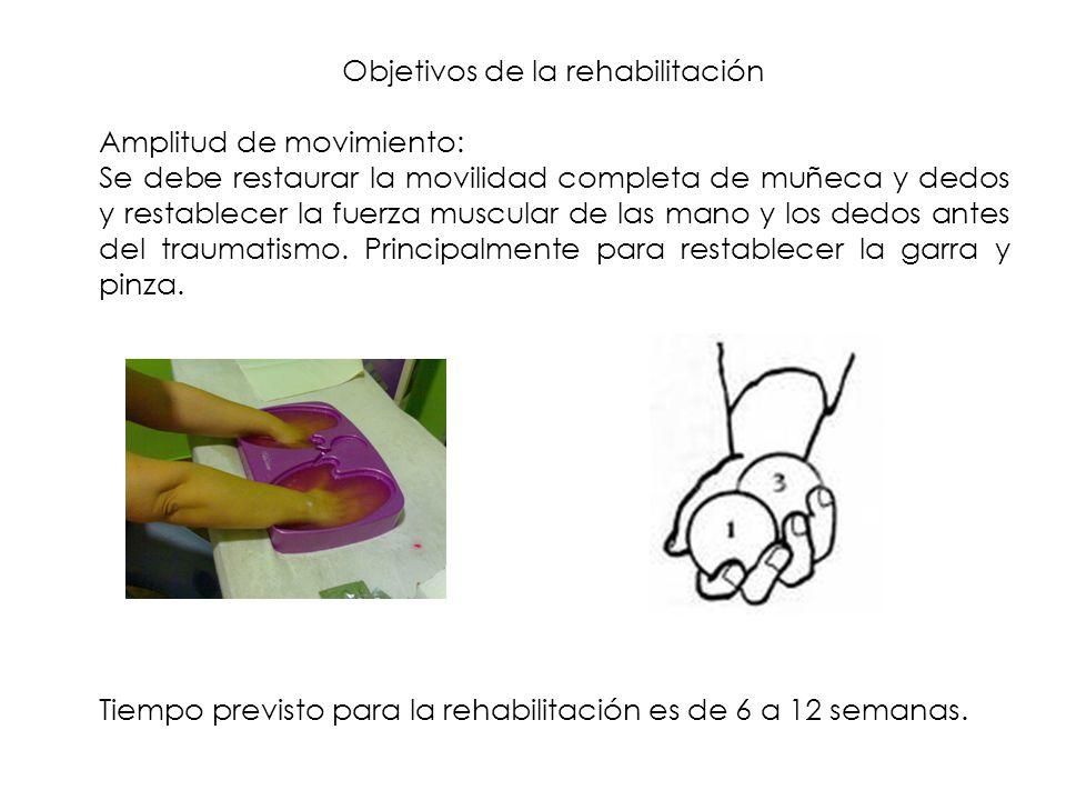 Objetivos de la rehabilitación Amplitud de movimiento: Se debe restaurar la movilidad completa de muñeca y dedos y restablecer la fuerza muscular de l