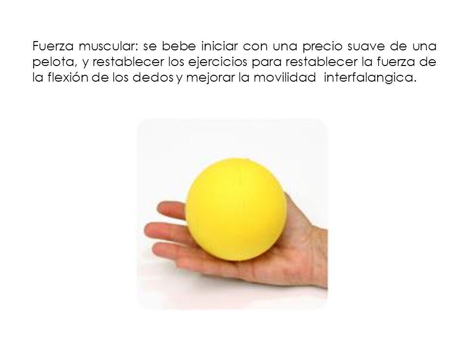 Fuerza muscular: se bebe iniciar con una precio suave de una pelota, y restablecer los ejercicios para restablecer la fuerza de la flexión de los dedo