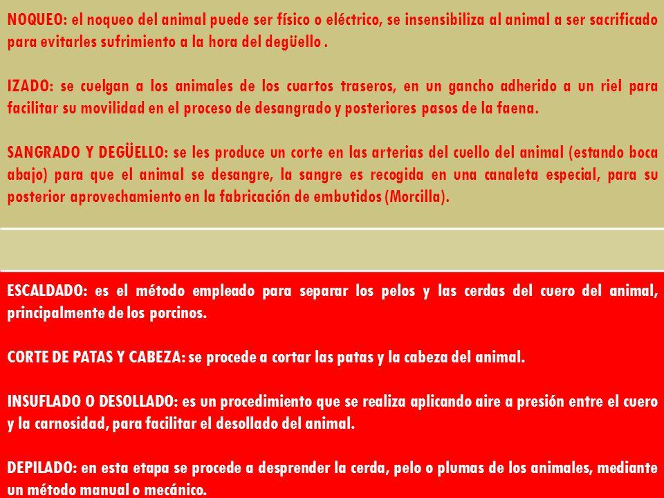 NOQUEO: el noqueo del animal puede ser físico o eléctrico, se insensibiliza al animal a ser sacrificado para evitarles sufrimiento a la hora del degüe