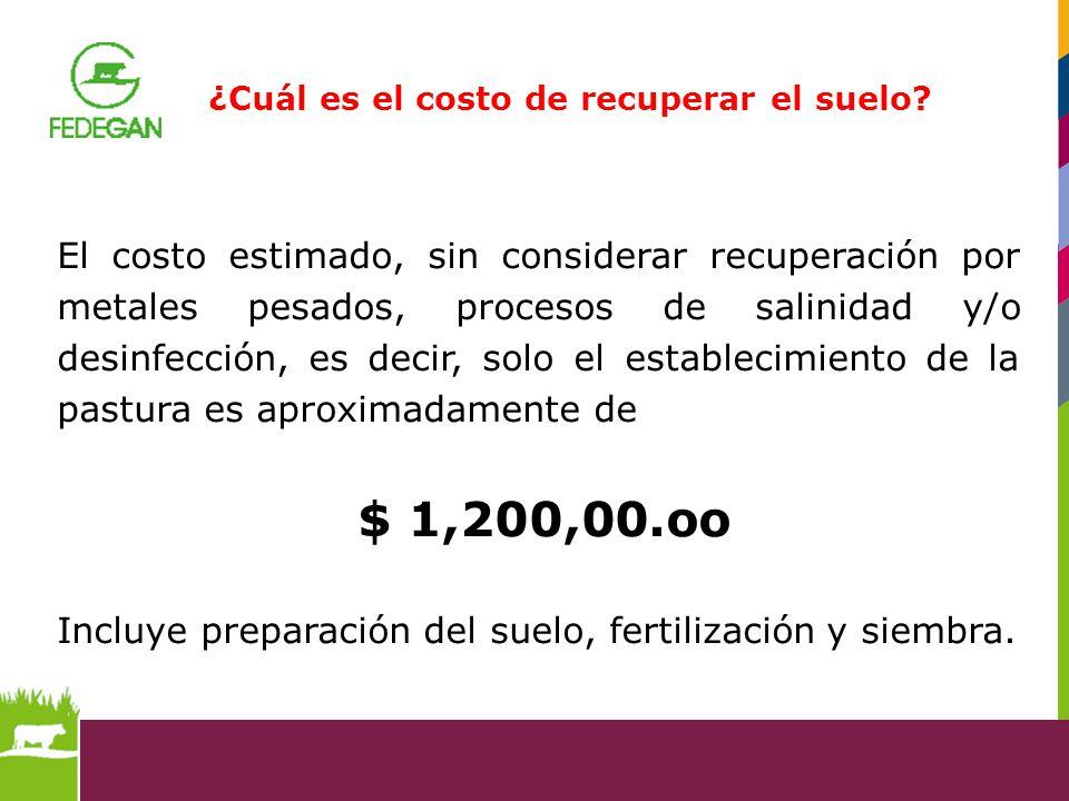 ¿Cuál es el costo de recuperar el suelo? El costo estimado, sin considerar recuperación por metales pesados, procesos de salinidad y/o desinfección, e