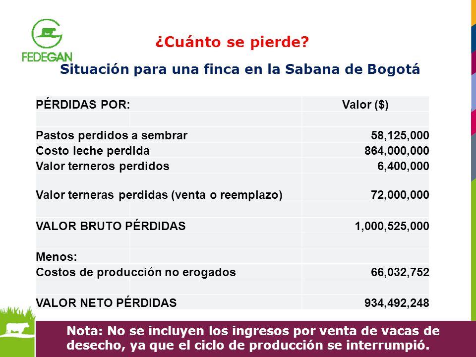 Situación para una finca en la Sabana de Bogotá PÉRDIDAS POR:Valor ($) Pastos perdidos a sembrar 58,125,000 Costo leche perdida 864,000,000 Valor tern