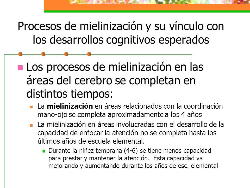 Procesos de mielinización y su vínculo con los desarrollos cognitivos esperados Los procesos de mielinización en las áreas del cerebro se completan en distintos tiempos: La mielinización en áreas relacionados con la coordinación mano-ojo se completa aproximadamente a los 4 años La mielinización en áreas involucradas con el desarrollo de la capacidad de enfocar la atención no se completa hasta los últimos años de escuela elemental.