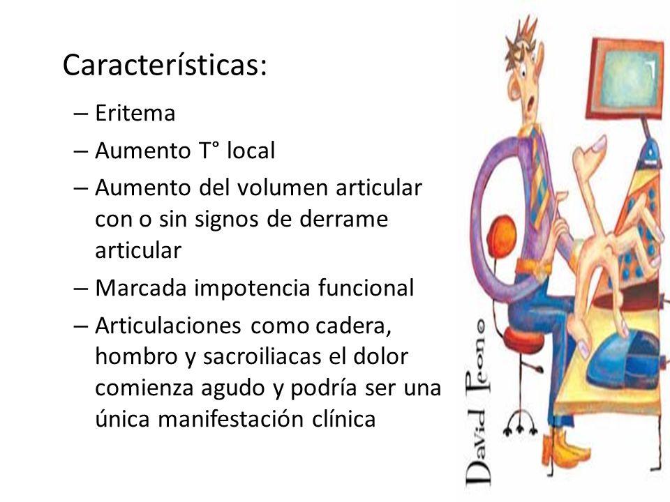 – Eritema – Aumento T° local – Aumento del volumen articular con o sin signos de derrame articular – Marcada impotencia funcional – Articulaciones como cadera, hombro y sacroiliacas el dolor comienza agudo y podría ser una única manifestación clínica Características: