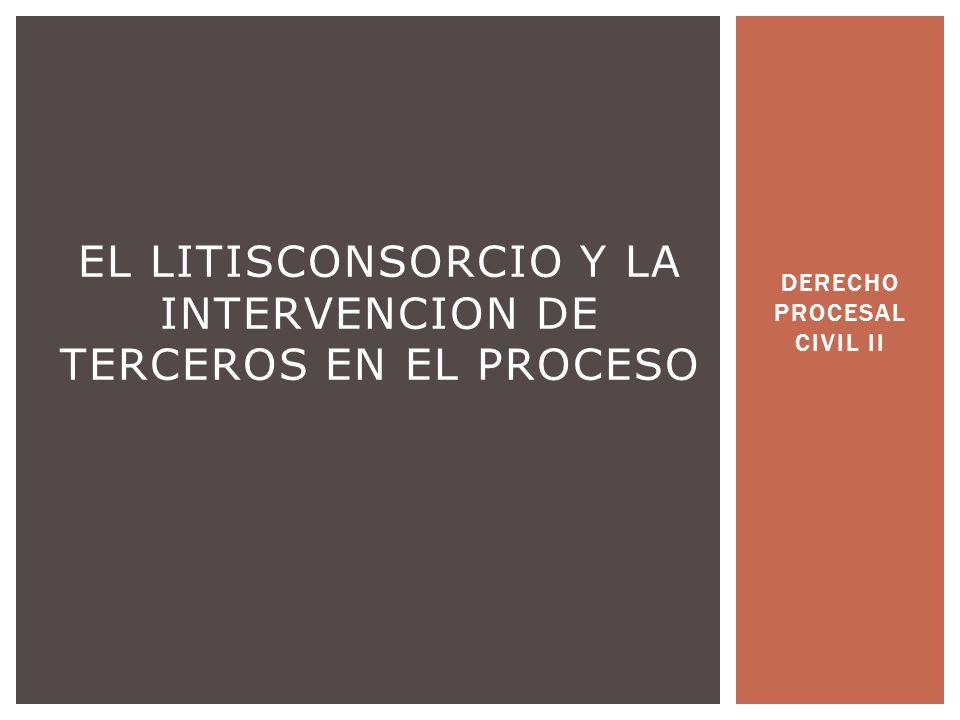 DERECHO PROCESAL CIVIL II EL LITISCONSORCIO Y LA INTERVENCION DE TERCEROS EN EL PROCESO