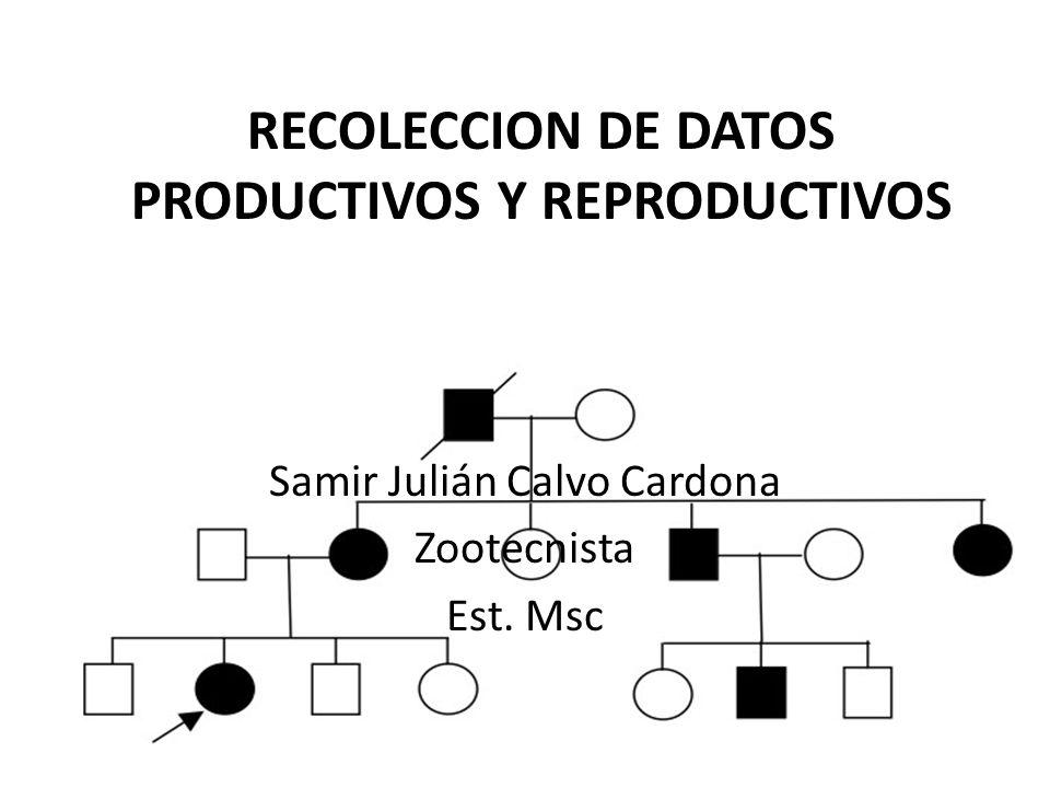 RECOLECCION DE DATOS PRODUCTIVOS Y REPRODUCTIVOS Samir Julián Calvo Cardona Zootecnista Est. Msc