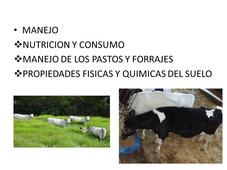 MANEJO NUTRICION Y CONSUMO MANEJO DE LOS PASTOS Y FORRAJES PROPIEDADES FISICAS Y QUIMICAS DEL SUELO