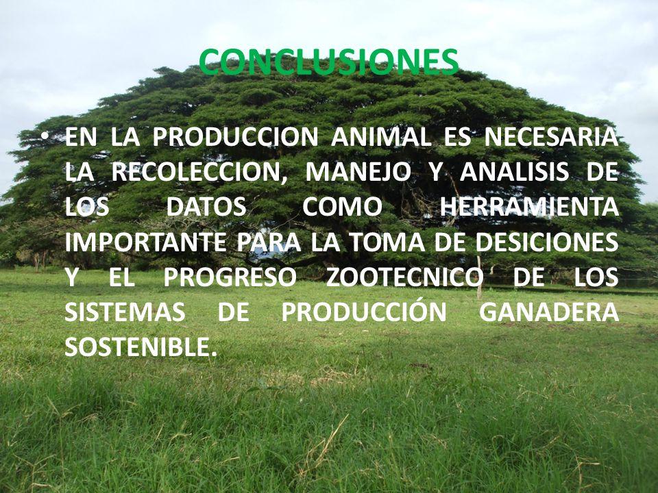 CONCLUSIONES EN LA PRODUCCION ANIMAL ES NECESARIA LA RECOLECCION, MANEJO Y ANALISIS DE LOS DATOS COMO HERRAMIENTA IMPORTANTE PARA LA TOMA DE DESICIONES Y EL PROGRESO ZOOTECNICO DE LOS SISTEMAS DE PRODUCCIÓN GANADERA SOSTENIBLE.