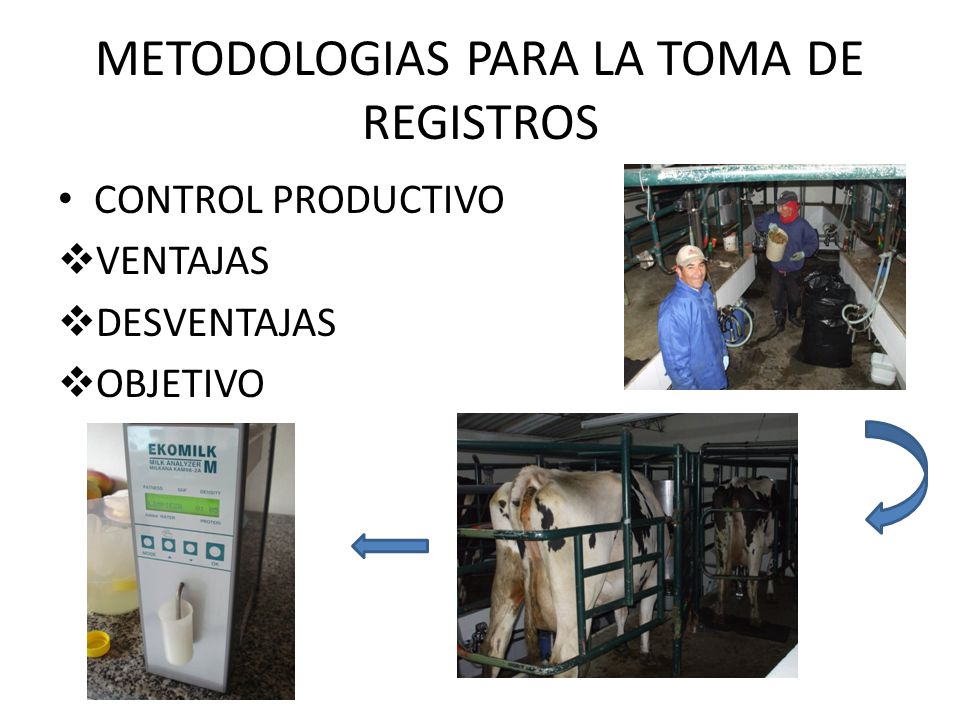 METODOLOGIAS PARA LA TOMA DE REGISTROS CONTROL PRODUCTIVO VENTAJAS DESVENTAJAS OBJETIVO