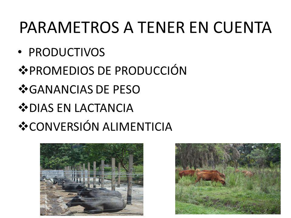 PARAMETROS A TENER EN CUENTA PRODUCTIVOS PROMEDIOS DE PRODUCCIÓN GANANCIAS DE PESO DIAS EN LACTANCIA CONVERSIÓN ALIMENTICIA