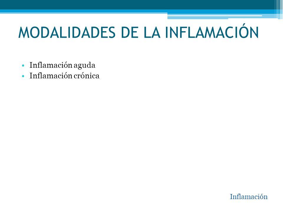 MODALIDADES DE LA INFLAMACIÓN Inflamación aguda Inflamación crónica Inflamación