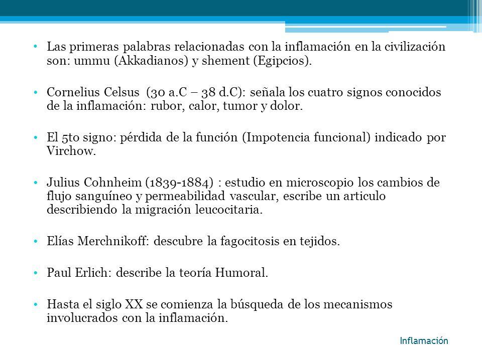 Inflamación Las primeras palabras relacionadas con la inflamación en la civilización son: ummu (Akkadianos) y shement (Egipcios). Cornelius Celsus (30