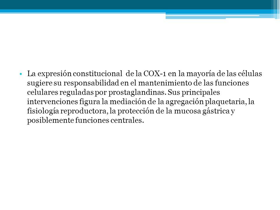 La expresión constitucional de la COX-1 en la mayoría de las células sugiere su responsabilidad en el mantenimiento de las funciones celulares regulad