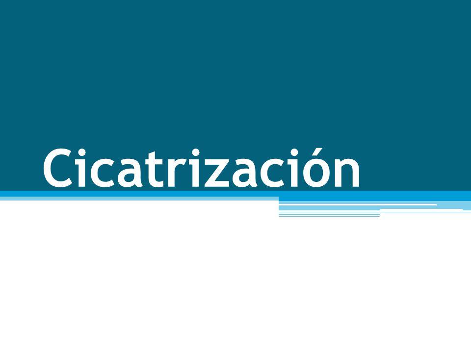Cicatrización Cutánea Es un Proceso Fisiológico que incluye una serie de eventos que se encuentran coordinados entre si; diferentes mecanismos como la coagulación, la inflamación y el sistema inmunológico