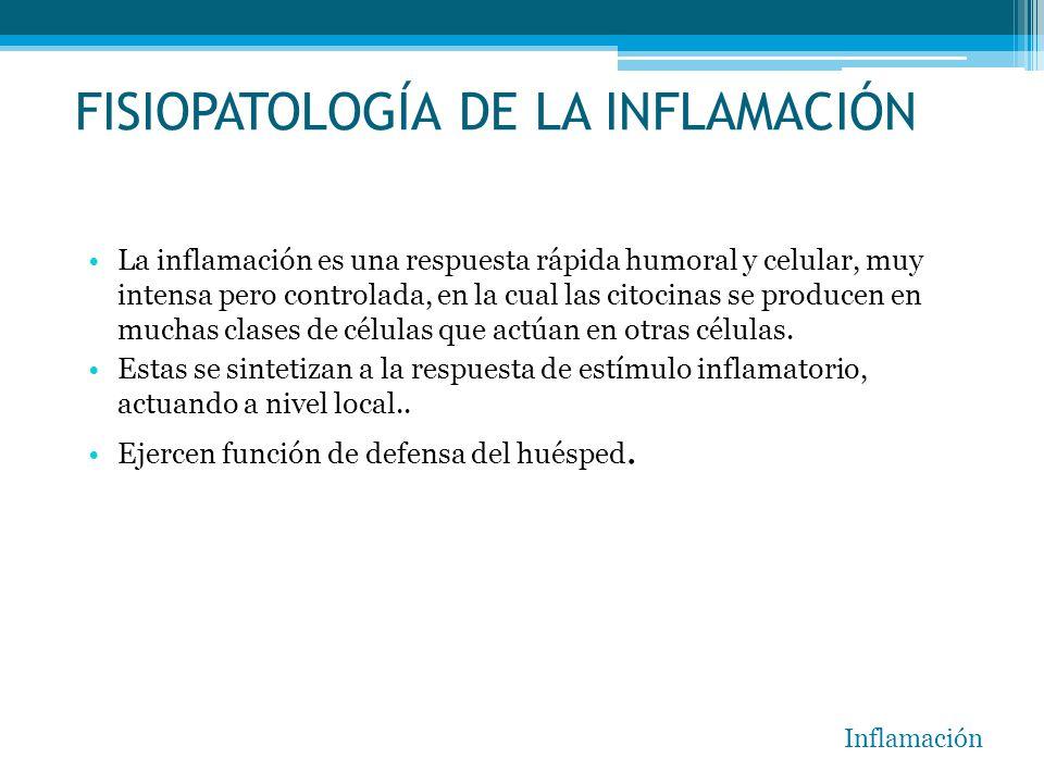 FISIOPATOLOGÍA DE LA INFLAMACIÓN La inflamación es una respuesta rápida humoral y celular, muy intensa pero controlada, en la cual las citocinas se pr