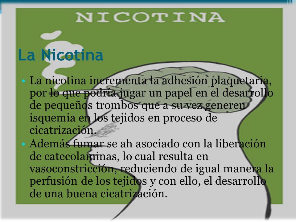 La Nicotina La nicotina incrementa la adhesión plaquetaria, por lo que podría jugar un papel en el desarrollo de pequeños trombos que a su vez generen