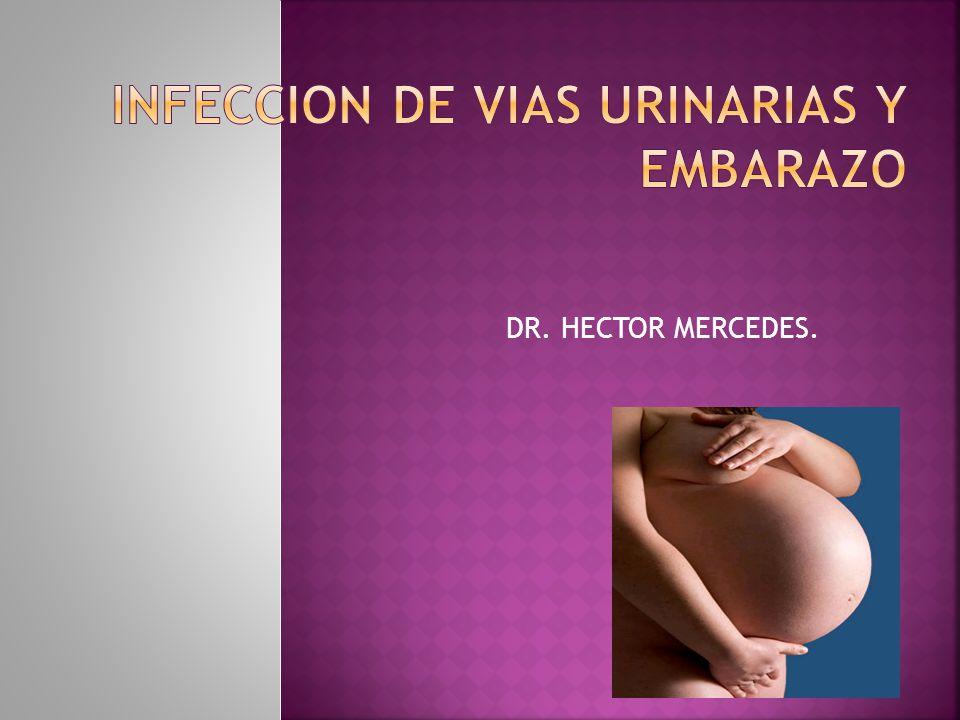 La vaginosis bacteriana y el coito se asocian a una mayor frecuencia de ITU en la embarazada.