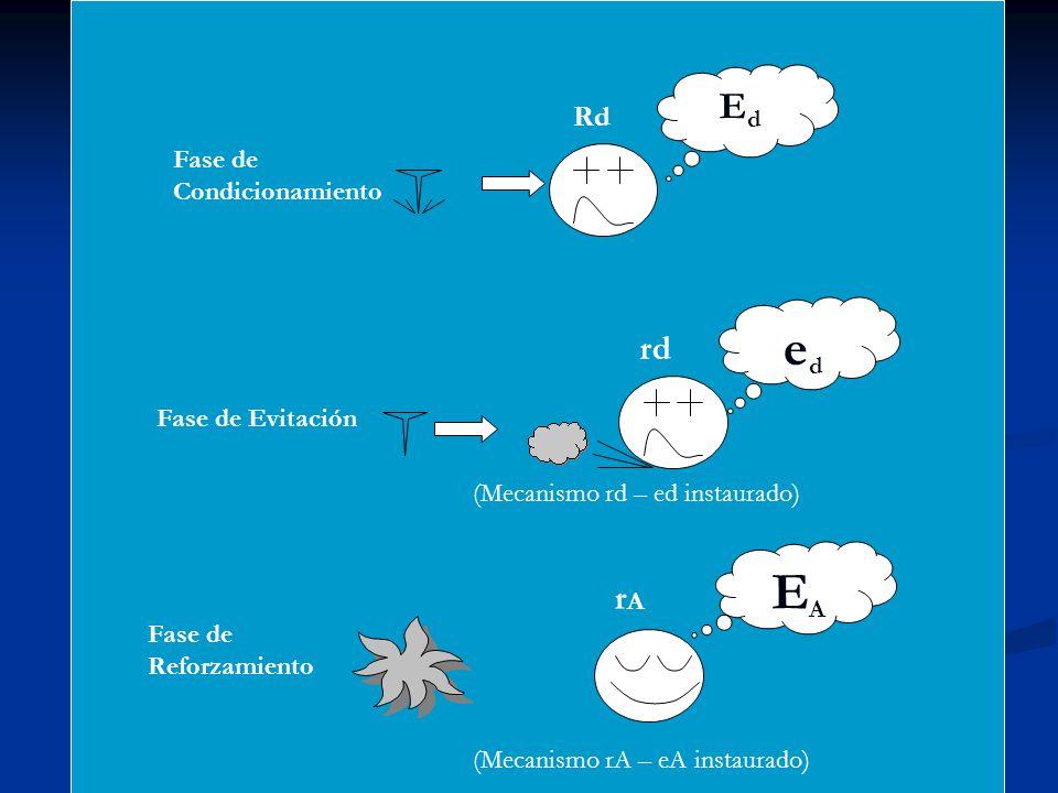 EdEd Rd eded rd EAEA rArA (Mecanismo rd – ed instaurado) (Mecanismo rA – eA instaurado) Fase de Condicionamiento Fase de Evitación Fase de Reforzamien