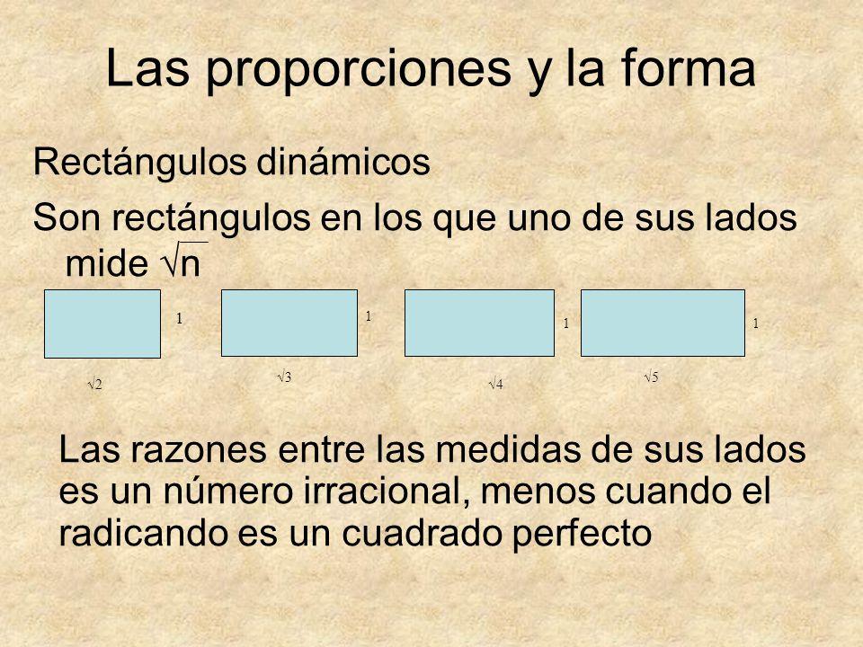 Rectángulos dinámicos Son rectángulos en los que uno de sus lados mide n 2 1 3 1 4 1 5 1 Las proporciones y la forma Las razones entre las medidas de
