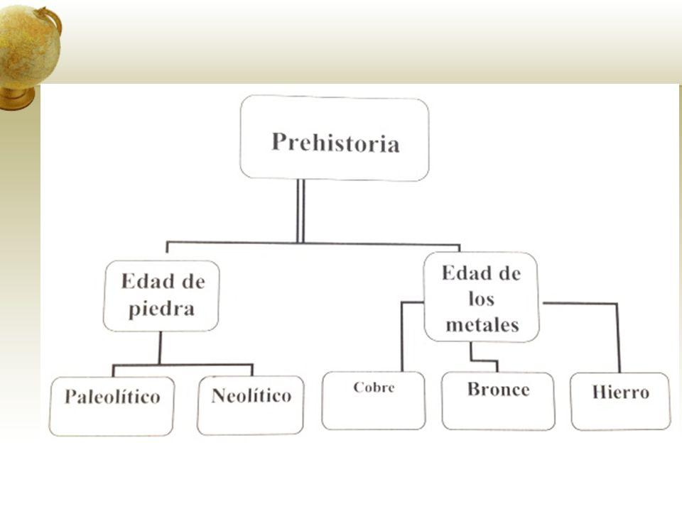 EVOLUCIÓN DE LOS PRIMATES Teoría más aceptada: EVOLUCIONISMO de Charles Darwin – mediados siglo XIX.