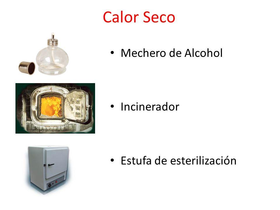 Calor Seco Mechero de Alcohol Incinerador Estufa de esterilización