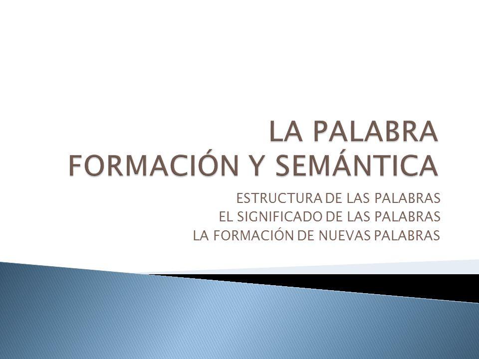 ESTRUCTURA DE LAS PALABRAS EL SIGNIFICADO DE LAS PALABRAS LA FORMACIÓN DE NUEVAS PALABRAS