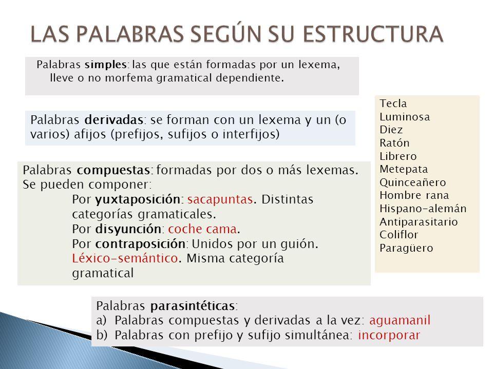 Palabras simples: las que están formadas por un lexema, lleve o no morfema gramatical dependiente. Tecla Luminosa Diez Ratón Librero Metepata Quinceañ