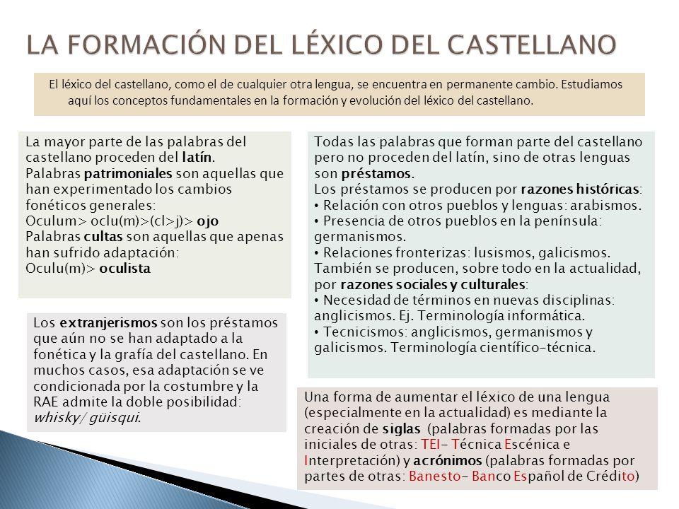 El léxico del castellano, como el de cualquier otra lengua, se encuentra en permanente cambio. Estudiamos aquí los conceptos fundamentales en la forma