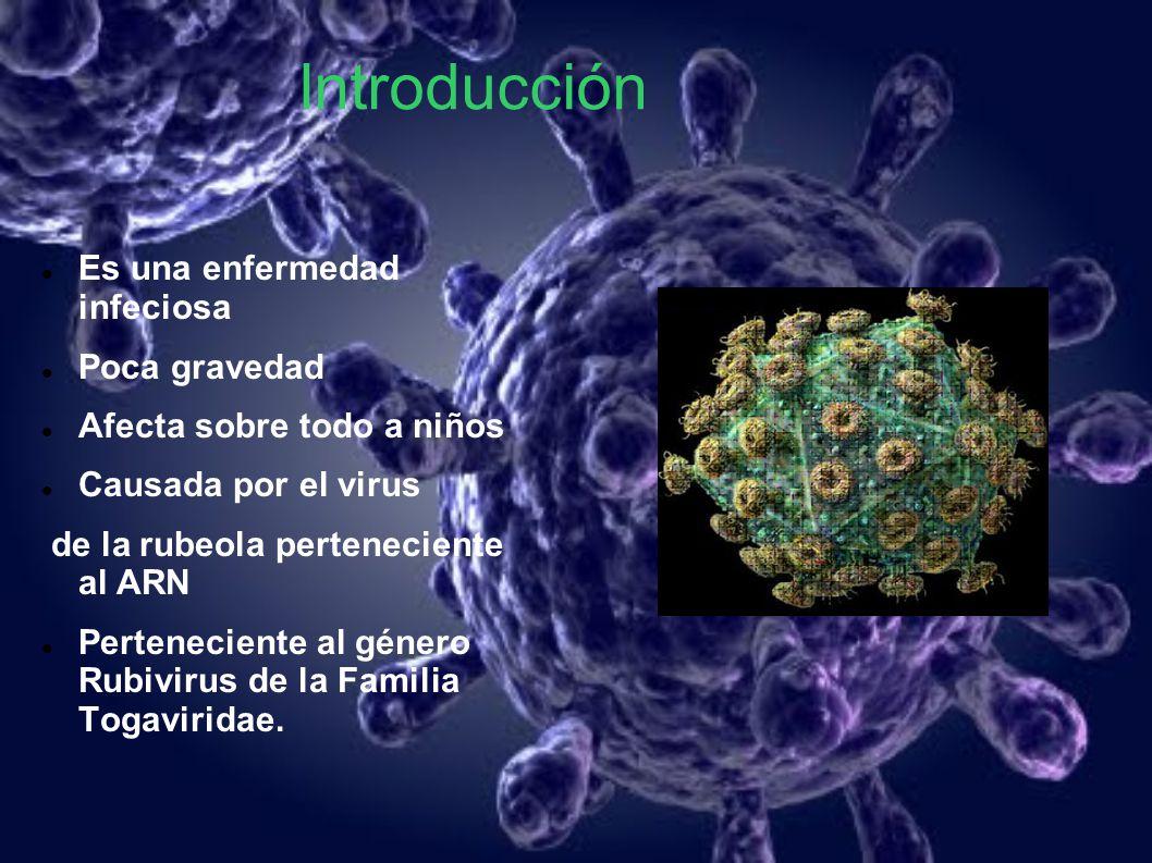 Introducción Es una enfermedad infeciosa Poca gravedad Afecta sobre todo a niños Causada por el virus de la rubeola perteneciente al ARN Perteneciente