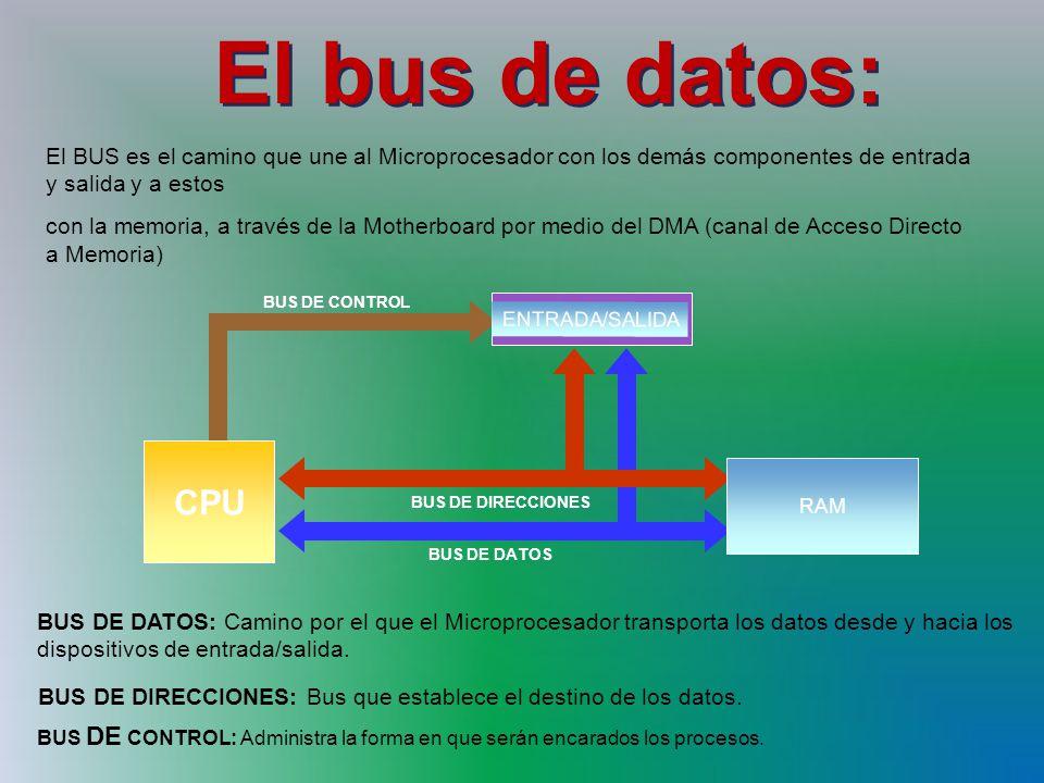 El bus de datos: El BUS es el camino que une al Microprocesador con los demás componentes de entrada y salida y a estos con la memoria, a través de la Motherboard por medio del DMA (canal de Acceso Directo a Memoria) BUS DE DATOS BUS DE DIRECCIONES ENTRADA/SALIDA RAM CPU BUS DE CONTROL BUS DE DATOS: Camino por el que el Microprocesador transporta los datos desde y hacia los dispositivos de entrada/salida.