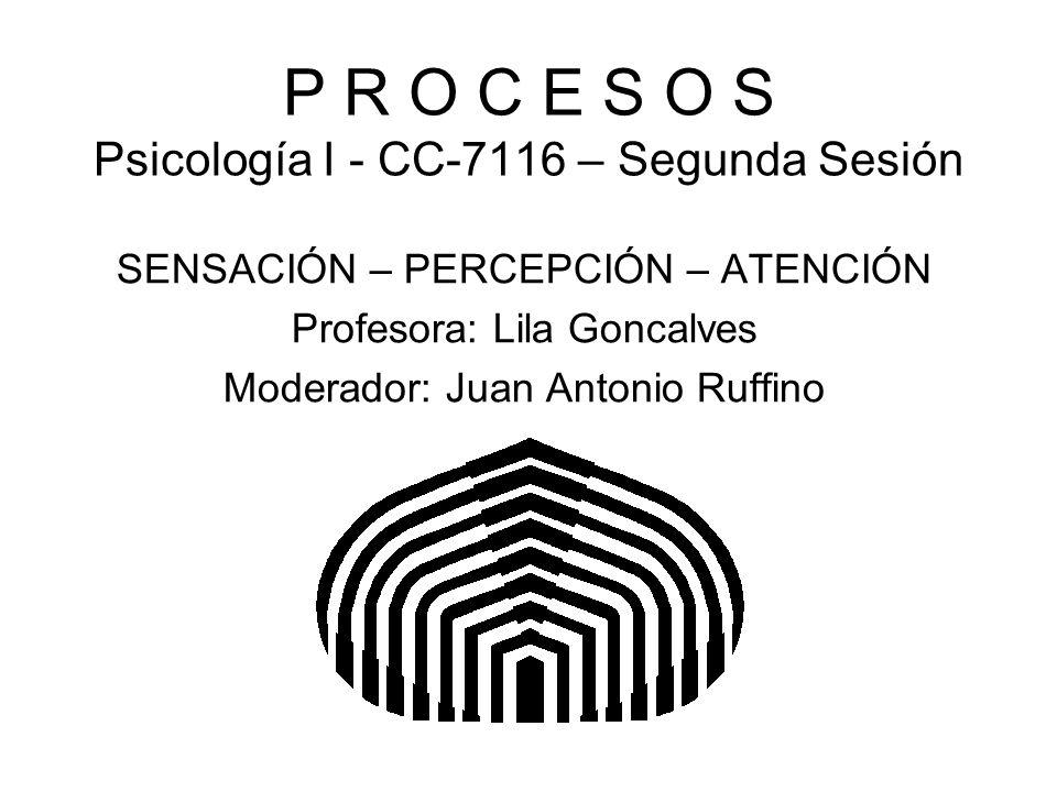 P R O C E S O S Psicología I - CC-7116 – Segunda Sesión SENSACIÓN – PERCEPCIÓN – ATENCIÓN Profesora: Lila Goncalves Moderador: Juan Antonio Ruffino