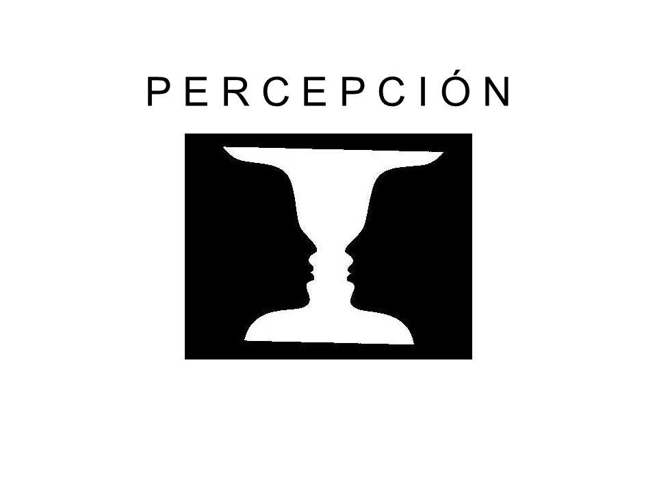 La percepción consiste en descifrar patrones significativos en medio de una masa desordenada de información sensorial.