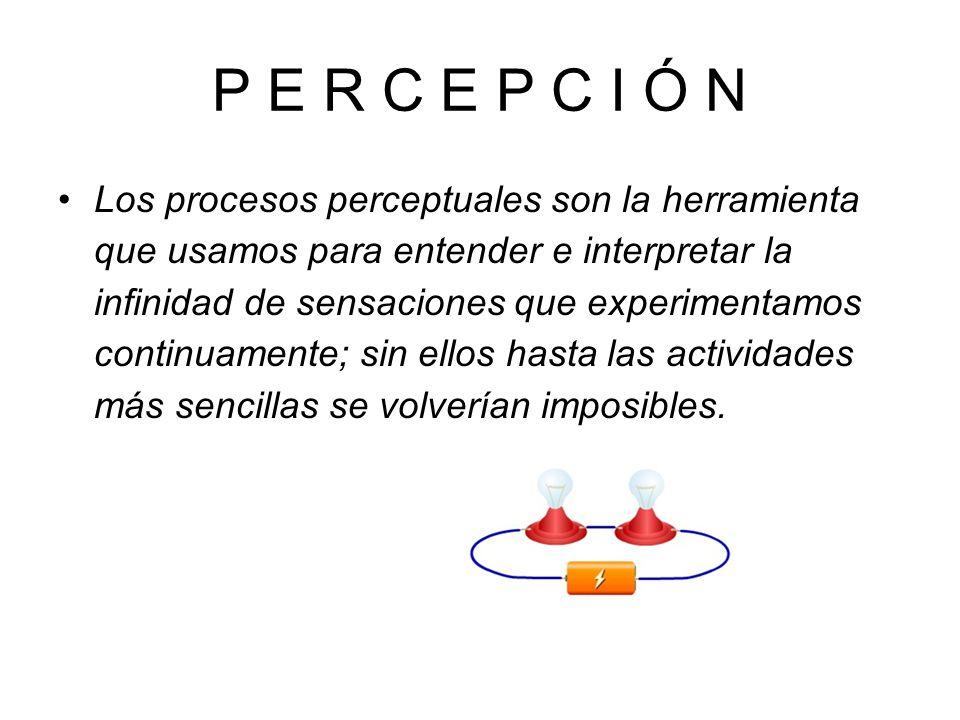 P E R C E P C I Ó N Los procesos perceptuales son la herramienta que usamos para entender e interpretar la infinidad de sensaciones que experimentamos