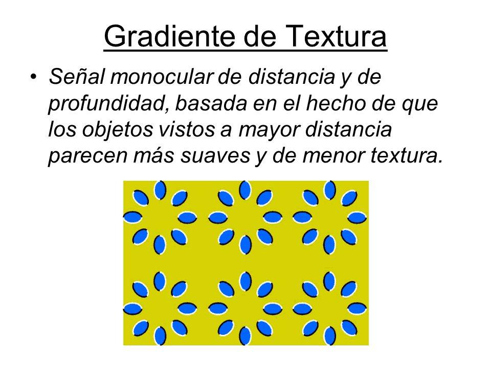 Gradiente de Textura Señal monocular de distancia y de profundidad, basada en el hecho de que los objetos vistos a mayor distancia parecen más suaves y de menor textura.