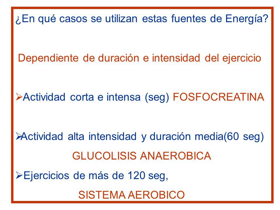 ¿En qué casos se utilizan estas fuentes de Energía? Dependiente de duración e intensidad del ejercicio Actividad corta e intensa (seg) FOSFOCREATINA A