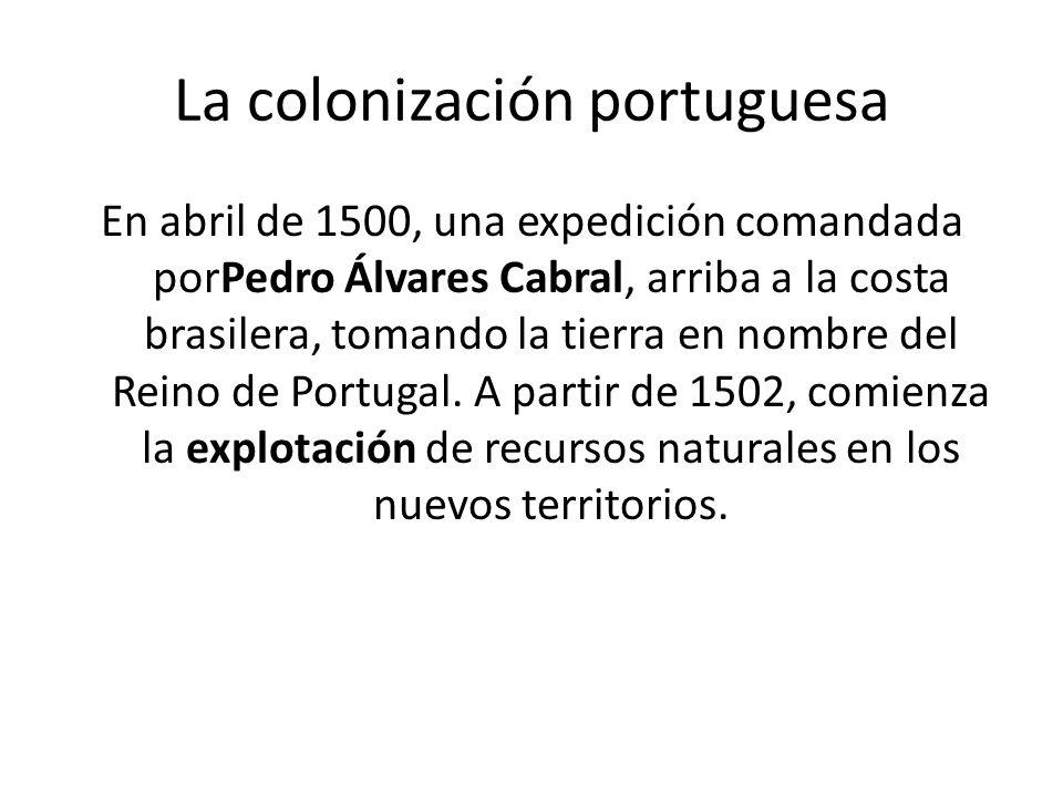 La colonización portuguesa En abril de 1500, una expedición comandada porPedro Álvares Cabral, arriba a la costa brasilera, tomando la tierra en nombr