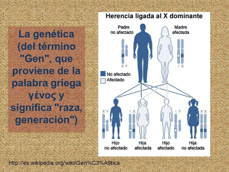 La genética (del término Gen , que proviene de la palabra griega γένος y significa raza, generación ) http://es.wikipedia.org/wiki/Gen%C3%A9tica