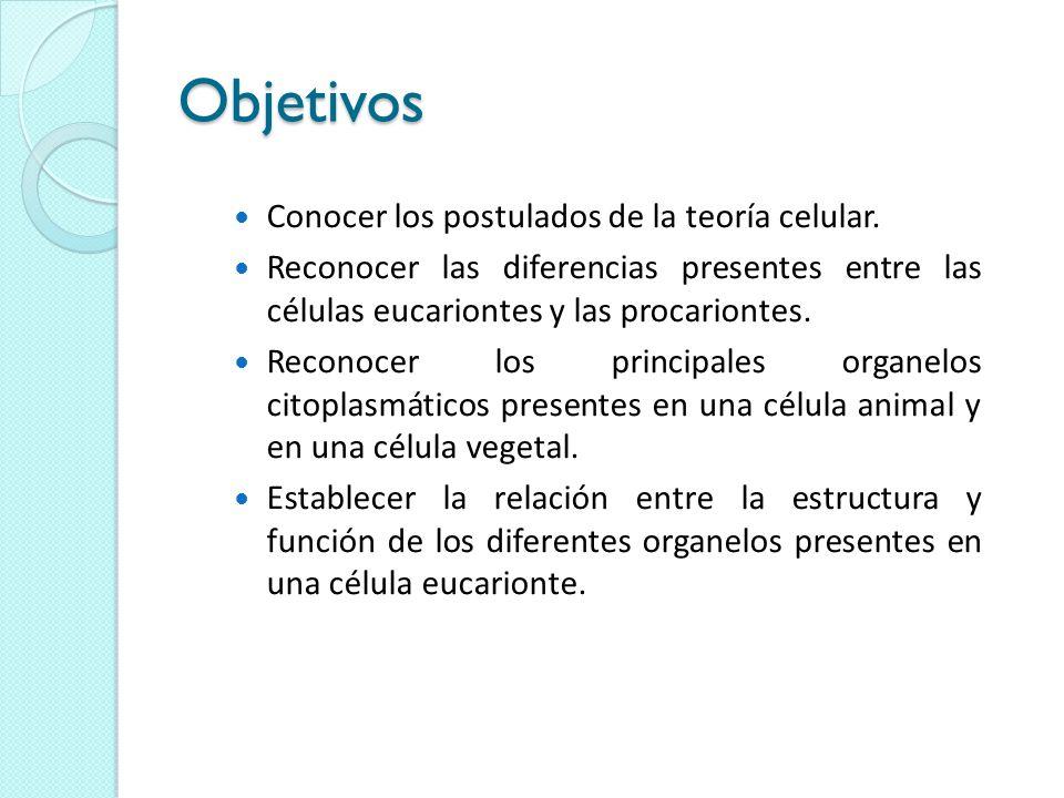Objetivos Conocer los postulados de la teoría celular.